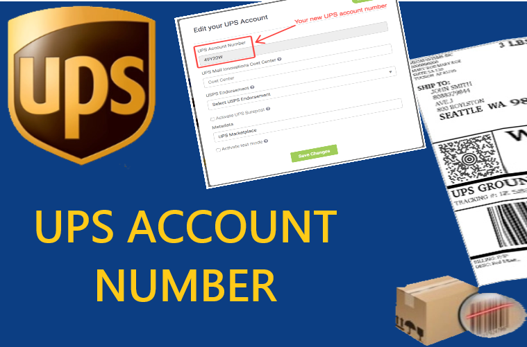 UPS Account Number